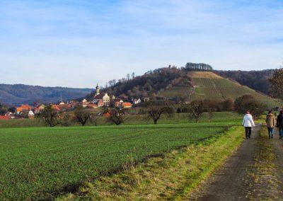 Wiesenbronn-Castell_WWW_06