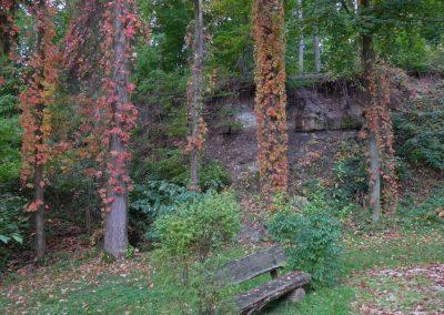 Herbstwanderung2013-10-13-03